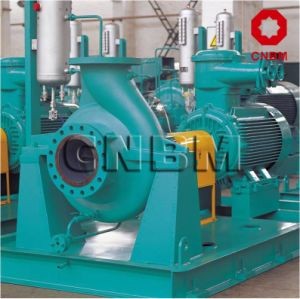 API 610 Heavy Duty Petrochemical Processing Pump pictures & photos