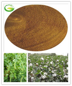 Iron Chelated Powder Soluble Fertilizer EDDHA pictures & photos