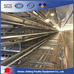 Chicken Rearing Cage for Sale /Poultry Battery Chicken Cage pictures & photos