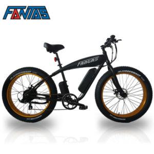 Electric Fat Bike >> China Fantas Bike Fat Boy 36v 750w Electric Fat Bike China Ebike