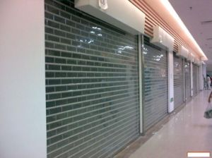 Transparent Security Roll up Door for Shop Door (TMTD) pictures & photos