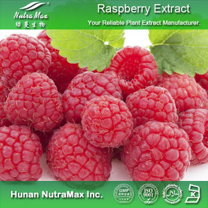 100% Natural Raspberry Extract (Raspberry Ketone 4% 98%, 4: 1
