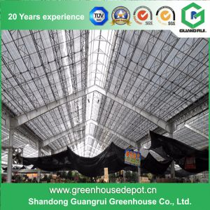 Agriculture Steel Frame/ Aluminum Profile PE Film Greenhouse pictures & photos