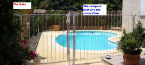 Fencing Gate for Swimming Pool (DOEM25)