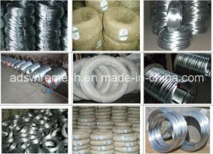 High Quality Galvanized Iron Wire (directly factory) pictures & photos