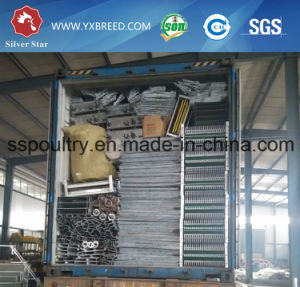 Chicken Cages for Chicken Poultry Farm in Africa pictures & photos