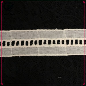Free Sample Available Various Colors Tc Lace pictures & photos