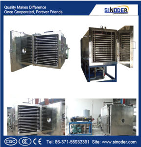 Vacuum Freeze Drying Machine Fruits and Vegetable Processing Machine pictures & photos