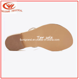Female Flats Flip Flops Shoes Women Sandals Slippers for Ladies pictures & photos