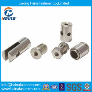 Non-Standard Fastener for Custom in Stainless Steel (OEM) pictures & photos