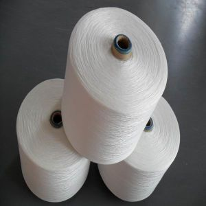 1200d PTFE Sewing Thread for Filter Bags pictures & photos