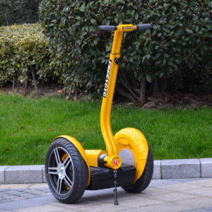 Electric Scooter Two Wheels Scooter Electric Chariot pictures & photos