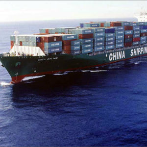 Sea Freight Shipping From China to Tauranga, New Zealand