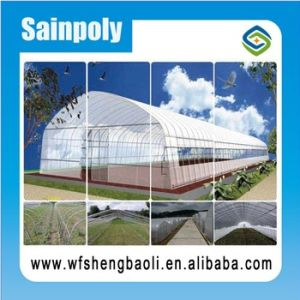 Good Quality and Easily Installed Agricultural/ Commercial Green House pictures & photos