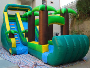 Commercial Grade Tropical Inflatable Slide for Kids (CYSL-582) pictures & photos