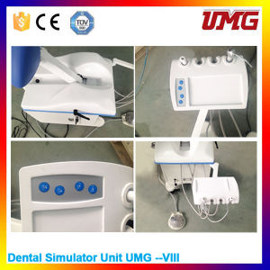 China Dental Equipment Dental Simulator Phantom pictures & photos