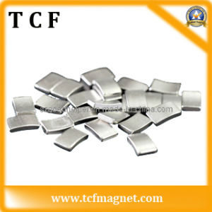 Strong Permanent Neodymium Magnet (N48H) with SGS