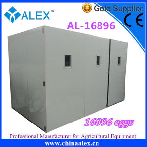 china top selling newest professional alex egg incubator 16896