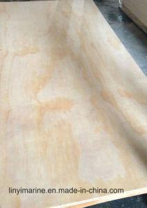 Wholesale Best Wood