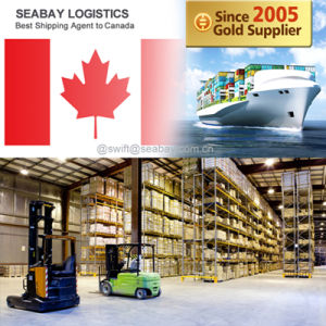 Shipping Service From Shenzhen to Montreal pictures & photos