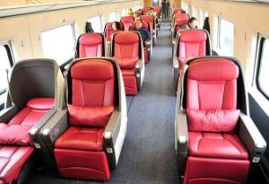 China Fiberglass VIP Chair by Rtm Technology - China