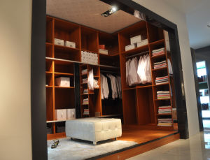 Walk-in-Closet Wd07 pictures & photos