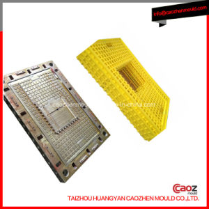 Hot Selling Plastic Injection Poultry Crate Mould