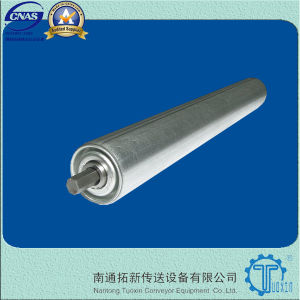 China Light Duty Gravity Roller Conveyor Rollers (TXGT01