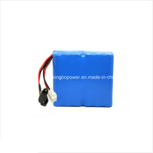 High Capacity 12 Volt Lithium Ion Rechargeable Battery Pack (17.6Ah)