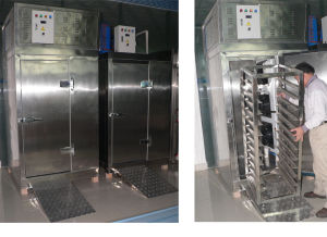 Blast Freezer with Single Trolley pictures & photos