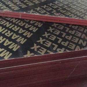 China Brownblack Phenolicwbp Glue Film Faced Plywood China