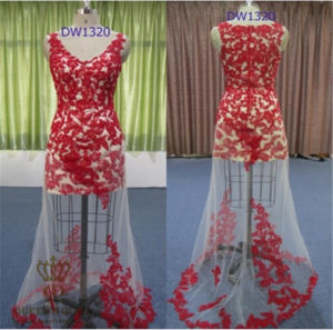 Perspective Sexy Lace Trailing Gown, Ladies Party Evening, Direct Selling