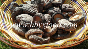 Healthy Fresh Vegetable Smooth Shiitake Mushroom pictures & photos