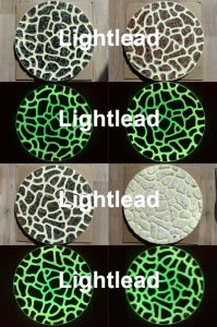Glow In The Dark Stepping Stones (PS)