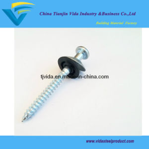 Screw Shank Roofing Nails with Washer pictures & photos