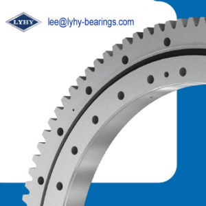 Slewing Bearing for Railway Slewing Crane (134.40.1600) pictures & photos
