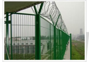 PVC Coated Welded Wire Mesh/ Wire Mesh Fence