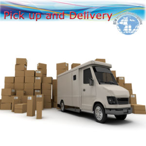 International Courier Express (pick up, storage, daily delivery) pictures & photos
