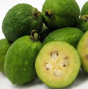 Feijoa Fruit Processing Machine, Whole Factory Line Machinery on Sale pictures & photos