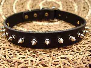 Real Leather Stud Pet Collar in Black Color, Pet Products Supply pictures & photos