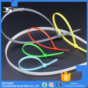 Differentt Colors Block Nylon 66 Ties