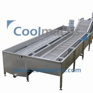 Vegetable Ice Water Cooling Machine/Ice Water Chiller pictures & photos