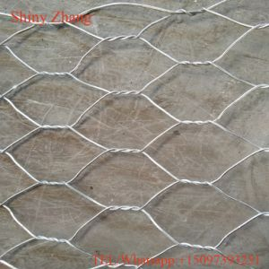 Hexagonal Wire Meshgabion Mesh/Green PVC Coated /Hot DIP Galvanized pictures & photos
