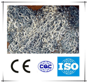 Galvanized Chain/Slaughtering Equipment/Poultry Slaughter Equipment pictures & photos