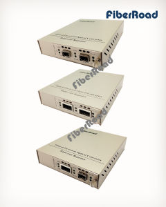 with SFP+ or XFP Port 10g Oeo Fiber Media Converter (3R Repeater)