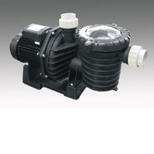 Swimming Pool Pump (FCPA-2) pictures & photos