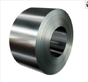 Rolled Stainless Steel Strips