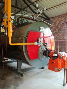 Wns Series Diesel Gas Fired Hot Water Boiler From China pictures & photos