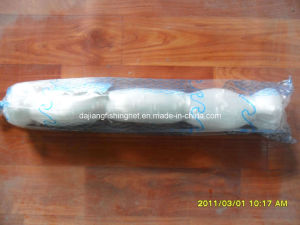 Nylon Monofilament Fishing Net (SAM_0925)