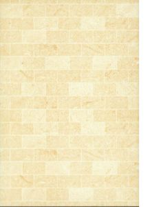 China 300x450 Glazed Ceramic Tile (FX304501) - China Tile, Ceramic Tile
